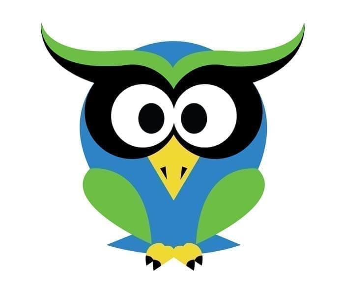 Owl Tech Logo Design